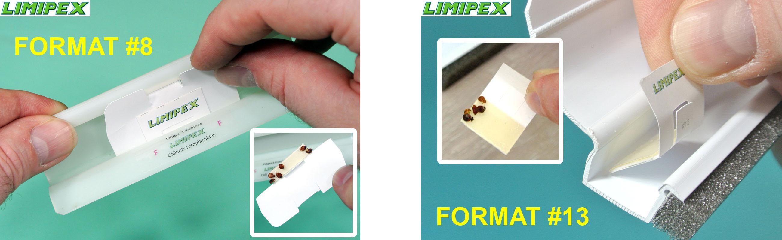 collants de remplacement pour pi ges insectes limipex. Black Bedroom Furniture Sets. Home Design Ideas